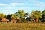 Mombo & Little Mombo Camp